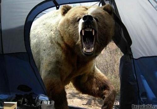 Первая ночевка в палатке вся правда