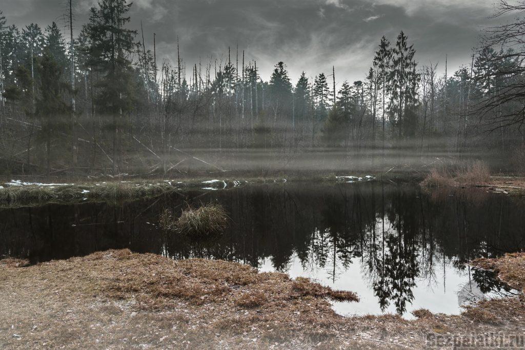как пройти болото
