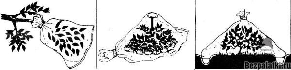 сбор конденсата