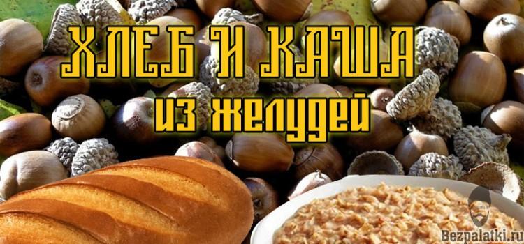 Как сварить кашу и испечь хлеб из желудей?