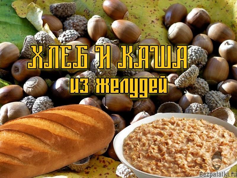 хлеб-и-каша-из-желудей