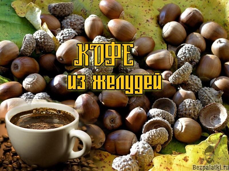 кофе-из-желудей