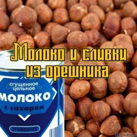 Как сделать молоко и сливки из лесного ореха