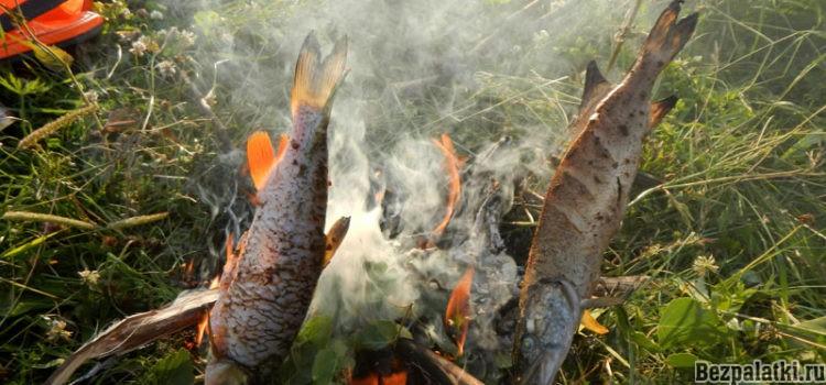 Рыба на костре запеченная на рожне